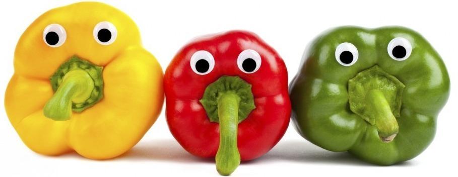 Vegetarisch menu